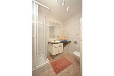 Apartment, shower, toilet, lake view