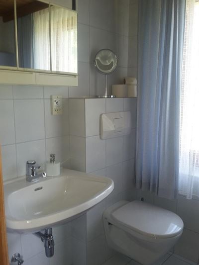 Apartment, shower, toilet, facing the garden