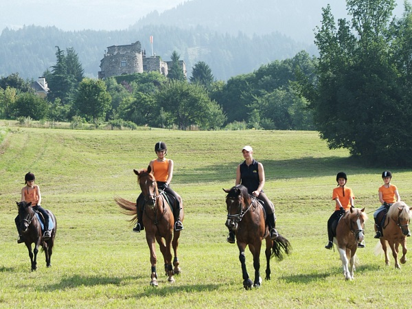 Horseback Riding Experts around the lake